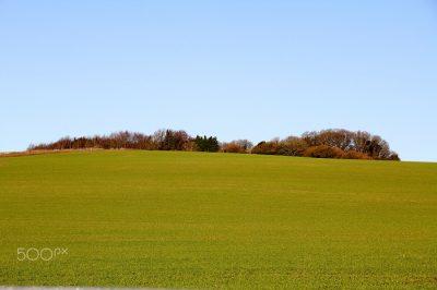 Cranbourne Grassy Hill